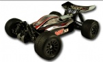 1/18 scale RTR 4wd brushless buggy-DART-BX