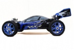 1/8 4WD Brushed Ready To Run Buggy